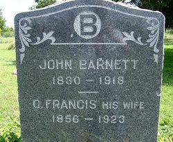 Charity Frances Fanny <i>Clark</i> Barnett