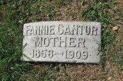 Fannie <i>Michaels</i> Cantor