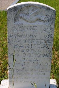 Annie B Barnes