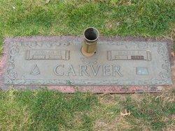 Adrian Garth Carver