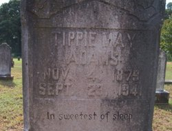 Tippie May Tippie <i>McCoy</i> Adams