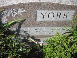 Esther E. <i>Beane</i> York