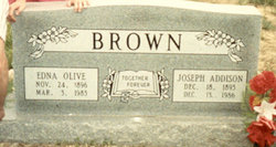 Edna Olive <i>White</i> Brown