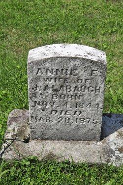 Annie Elizabeth <i>Reminsnider</i> Albaugh