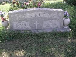 Anita <i>Bravo</i> Bonuz