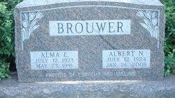 Albert N Brouwer