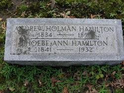 Andrew Holman Hamilton