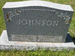 Sigurd Christian Johnson