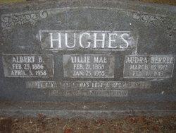 Lillie Mae <i>Shelton</i> Hughes