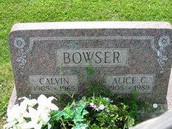 Alice C <i>Van Buren</i> Bowser
