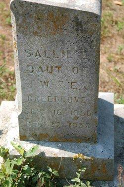 Sarah Elizabeth Hannah Sallie Breedlove