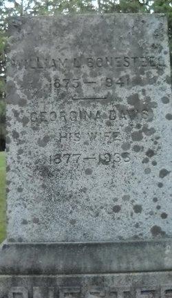 Georgina <i>Davis</i> Bonesteel