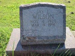 Jay L Wilson