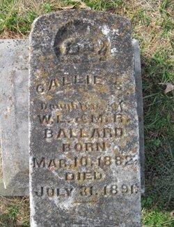 Callie S Ballard