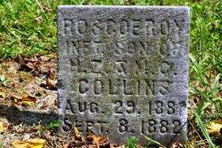 Roscoe Roy Collins