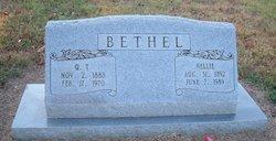 Nellie <i>Fritzlan</i> Bethel
