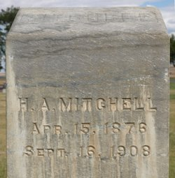 Henry A Mitchell