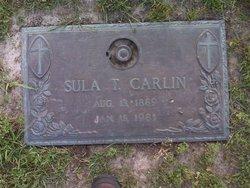 Sula <i>Terry</i> Carlin