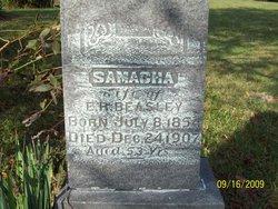 Samacha <i>Jefferes</i> Beasley