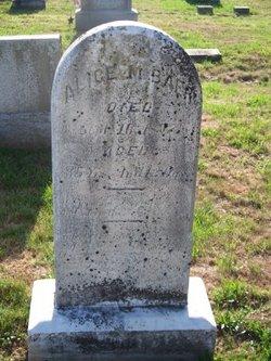 Alice M. Baer