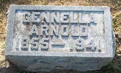 Gennella <i>Luman</i> Arnold