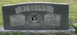 Alex E Blevins