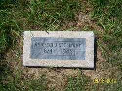 Andrew J Stellman