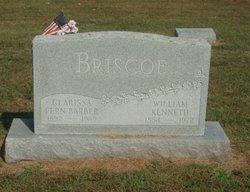 Clarissa Fern <i>Barber</i> Briscoe