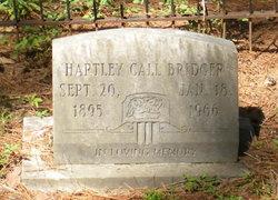 Hartley Call Bridger