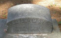 Cornelia O. <i>Fluitt</i> Bridger