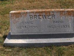 Lucinda Jane Jennie <i>Goin</i> Brewer