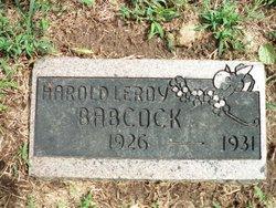 Harold LeRoy Babcock