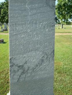 William Henry Hooe