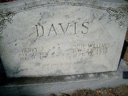 Emily Ann Savannah Emlie <i>Williams</i> Davis