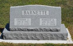 Sedohr Janet <i>MacDonald</i> Barnette