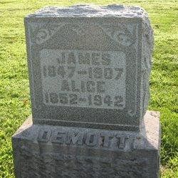 James DeMott