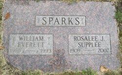 William Everett Sparks