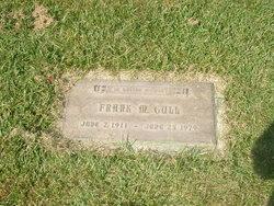 Frank Martin Flick Gull