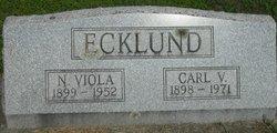 Nellie Viola <i>Lindgren</i> Ecklund