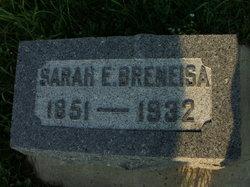 Sarah Elizabeth <i>McLane</i> Breneisa
