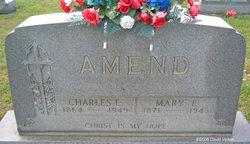 Charles E Amend