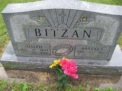 Joseph Frank Bitzan