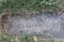 James Orin Wakefield