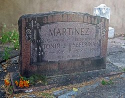 Seferina <i>V.</i> Martinez