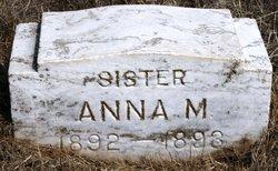 Anna M Kramer