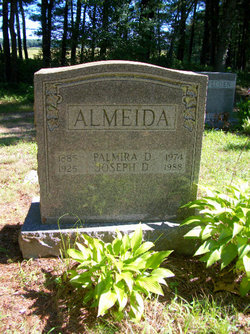 Joseph D Almeida