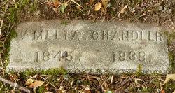 Amelia Chandler
