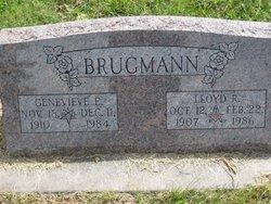 Lloyd Raymond Brugmann