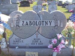 Mrs Judith Ann Judy <i>Ash</i> Zabolotny