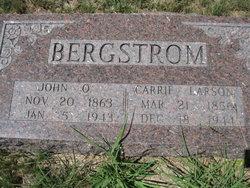 Carrie <i>Larson</i> Bergstrom